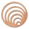 Amello Edelstahl Coin Kreise rosegold für Coinsfassung Stahlschmuck ESC524E